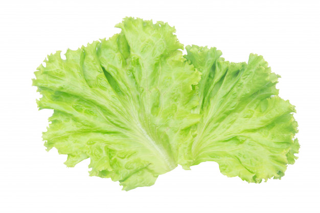 Health Benefits with Lettuce