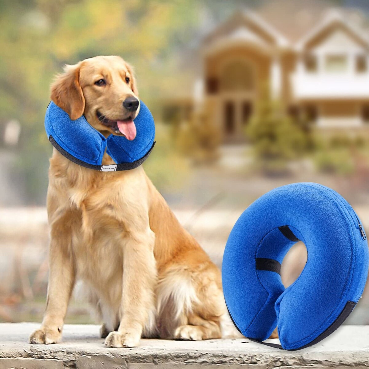 BENCMATE Protective Inflatable Collar for Dogs and Cats